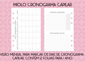 folhas internas fichário 2022_CRONOGRAMA CAPILAR